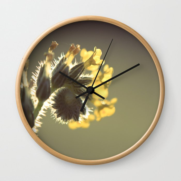Curl Wall Clock