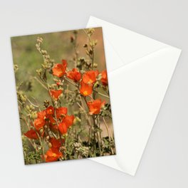 Desert Wildflower - 4 Stationery Cards