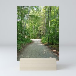 Back road Mini Art Print