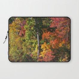 Changing Seasons Laptop Sleeve