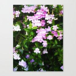 Glowing Violet Trumpets Canvas Print
