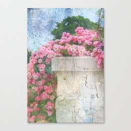 Cascade of Pink Roses Canvas Print