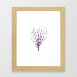 Lavender Bundle Framed Art Print