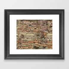 Peeling Worm Wood Framed Art Print