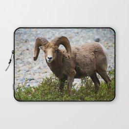Ram Stare Down Laptop Sleeve