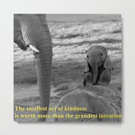 Baby elephant and  Mother Metal Print