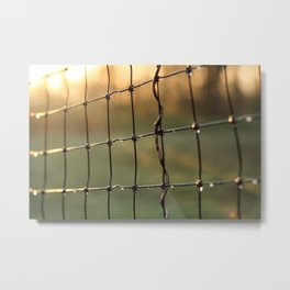 Water Droplets on Wire Fence in the Early Morning Light Metal Print