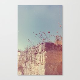 Outer Wall Canvas Print