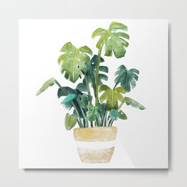 Split-Leaf Philodendron Metal Print