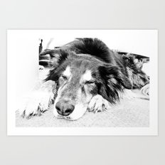 Tired Old Dog Art Print