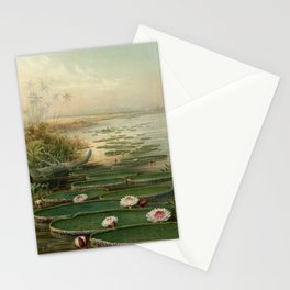 Vintage Giant Water Lily Natural History Illustration, Victoria amazonica Stationery Cards