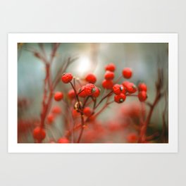 New York Nature II Art Print