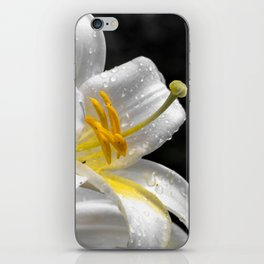 Lily flower covered by raindrops iPhone Skin