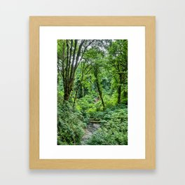 Tranquil Stream Framed Art Print