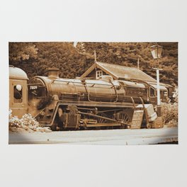 Sepia Stea engine 73129 Rug