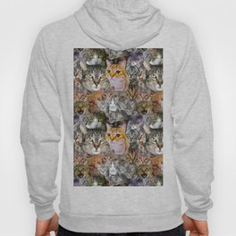 CATS!  Hoody