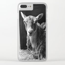 We Are Expecting Visitors Soon Clear iPhone Case