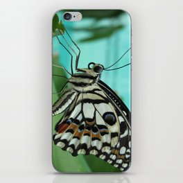 Buttefly iPhone Skin