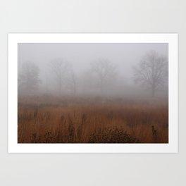 Misty Prairie Art Print