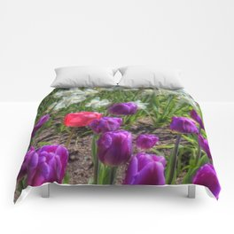 Dash of Pink - Tulip Comforters