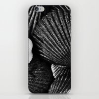 shells iPhone & iPod Skins featuring Shells by SilverSatellite