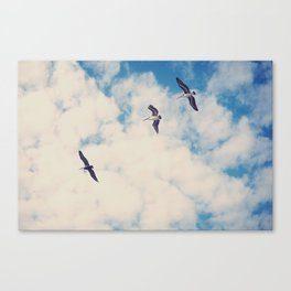 Flying Over Seas Canvas Print