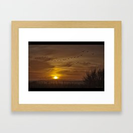 Exodus Framed Art Print
