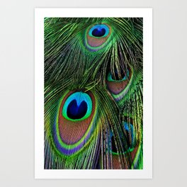 Iridescent Eyes Art Print