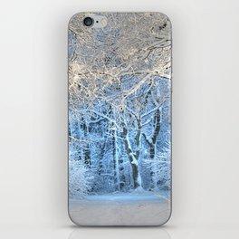 Another winter wonderland iPhone Skin