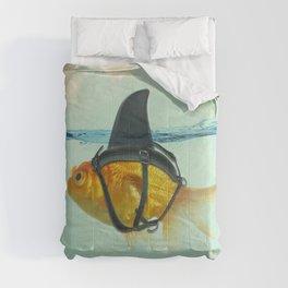 BRILLIANT DISGUISE -2 Comforters