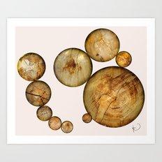Wood Wood 2 Art Print