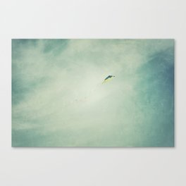 Soar Above Canvas Print