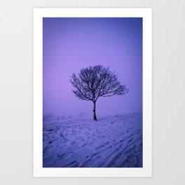 Lone Tree in Winter Art Print
