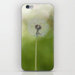 Dandelion in LOVE- Flower Floral Flowers Spring iPhone Skin
