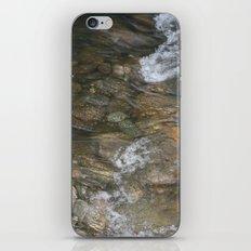 Natural Mosaic 1 iPhone & iPod Skin