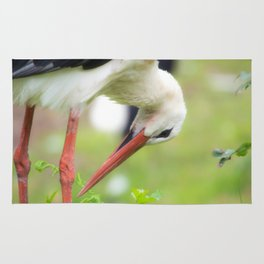 Portrait of a stork in summer Rug