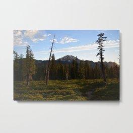 Lassen National Park Metal Print