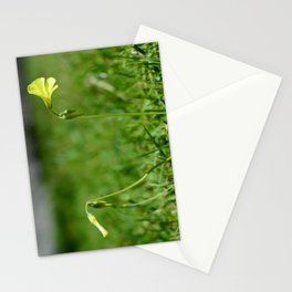Oxalis Stationery Cards