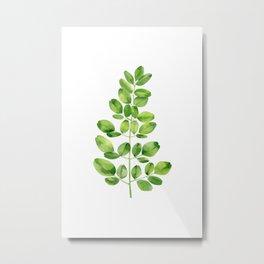 Moringa leaves Metal Print