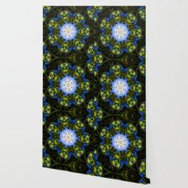 Kaleidoscopic Mandala Baby Blue Eyes Flower Wallpaper