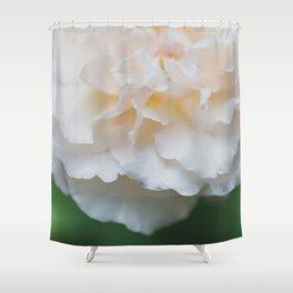 Garden Rose - Flower Photography Shower Curtain