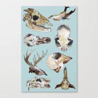 skulls Canvas Prints featuring Skulls by Katelyn Patton