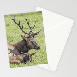 I'll Watch the Kids Stationery Cards