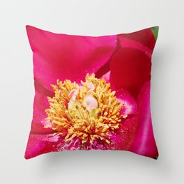 Peony Scarlet O'Hara - Red Satin with Gold Dust Throw Pillow