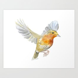 Robin in Flight Watercolor Art Print