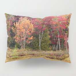autumn in the adirondacks Pillow Sham