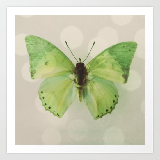 green butterfly Art Print