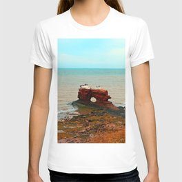Unique Sandstone  Formation and the Birds T-shirt