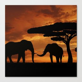 African elephants silhouettes in sunset Canvas Print