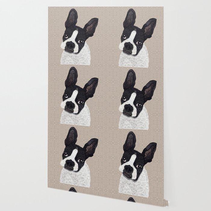Boston Terrier 2015 Wallpaper